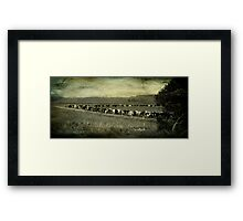 till the cows come in Framed Print