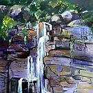 Cameron Falls Tamborine Mountain by Virginia McGowan