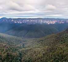 Grose Valley, Blue Mountains, Australia by Christopher Wilson