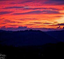 When the new day comes. by Andrzej Goszcz. by © Andrzej Goszcz,M.D. Ph.D