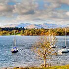 103 Lake Windermere by George Standen