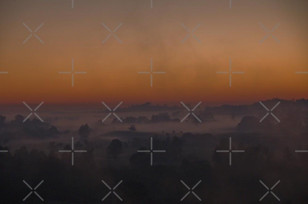 Smoke and Mist by Liz Worth