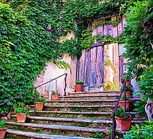 Entering Into Paradise Villa Cimbrone by daphsam