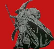 Gandalf by Schmljimbo