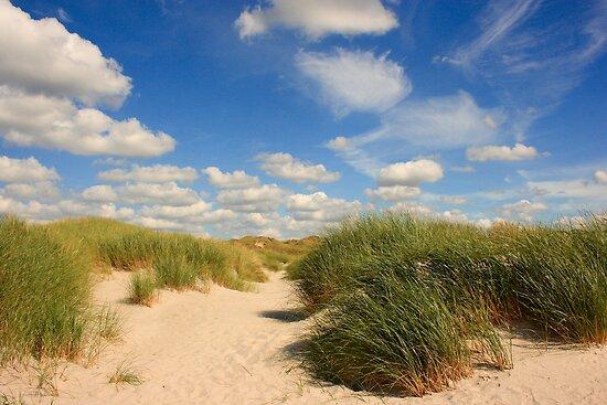 Summer at the beach by Adrian McGlynn