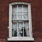 Window, Spitalfields by TheLondonphile