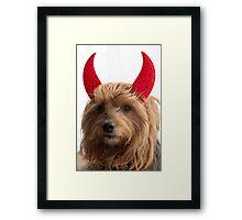 Angelic Devil  Framed Print