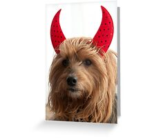 Angelic Devil  Greeting Card