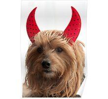Angelic Devil  Poster