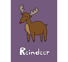 R for Reindeer Photographic Print