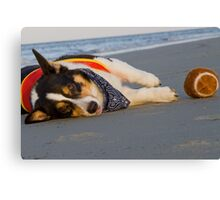 Unnecessary Roughness Canvas Print