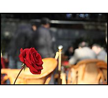 Red rose in a tea house Photographic Print