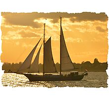 Sunset and Sails Photographic Print