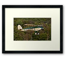 Parnell Elf Framed Print