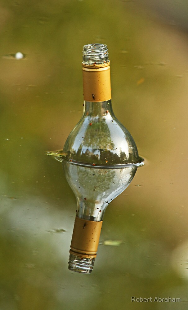 Message In A Bottle (Multi Reflections) by Robert Abraham