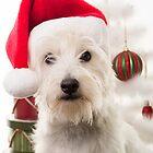 Christmas Dog by Edward Fielding