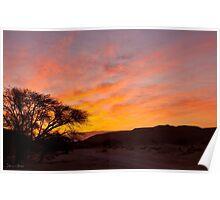 Desert red sunrise  Poster