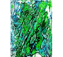 Blue Green and Black Photographic Print