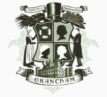 Grantham coat of arms (green) by earlofgrantham