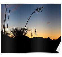 Robledo Sunset Poster