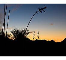 Robledo Sunset Photographic Print