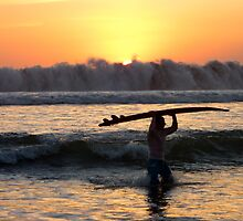 Surf's Up by Jen Silacci