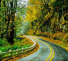 Oregon Old Highway 30 by mrmattb