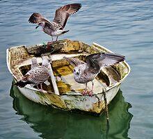 The Nursery Boat ~ Lyme Regis by Susie Peek