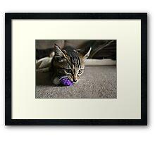 Purple Ball Framed Print