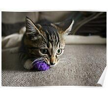 Purple Ball Poster
