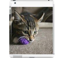 Purple Ball iPad Case/Skin