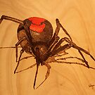 Pyrography: Australian Redback Spider by aussiebushstick