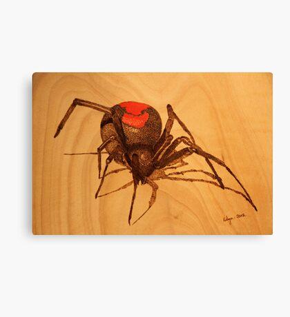 Pyrography: Australian Redback Spider Canvas Print