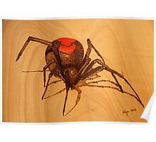 Pyrography: Australian Redback Spider Poster