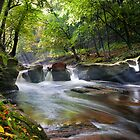 river gelt by paul mcgreevy