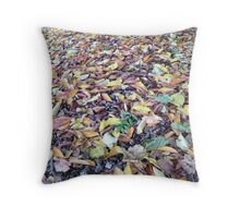 Autumn Show Throw Pillow