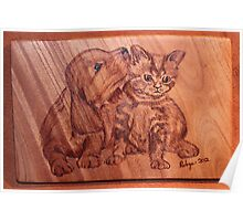 Pyrography: The 'Kleenex' Puppy & Kitten Poster