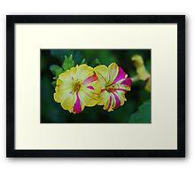 Sidewalk Blooms Framed Print