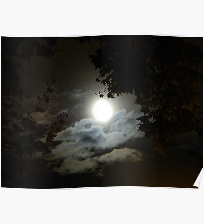 Spooky silouette Poster