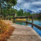 Walk Around The Lake by Keri Harrish