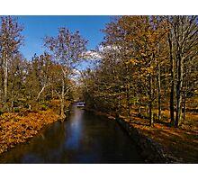 Tints of Autumn Photographic Print