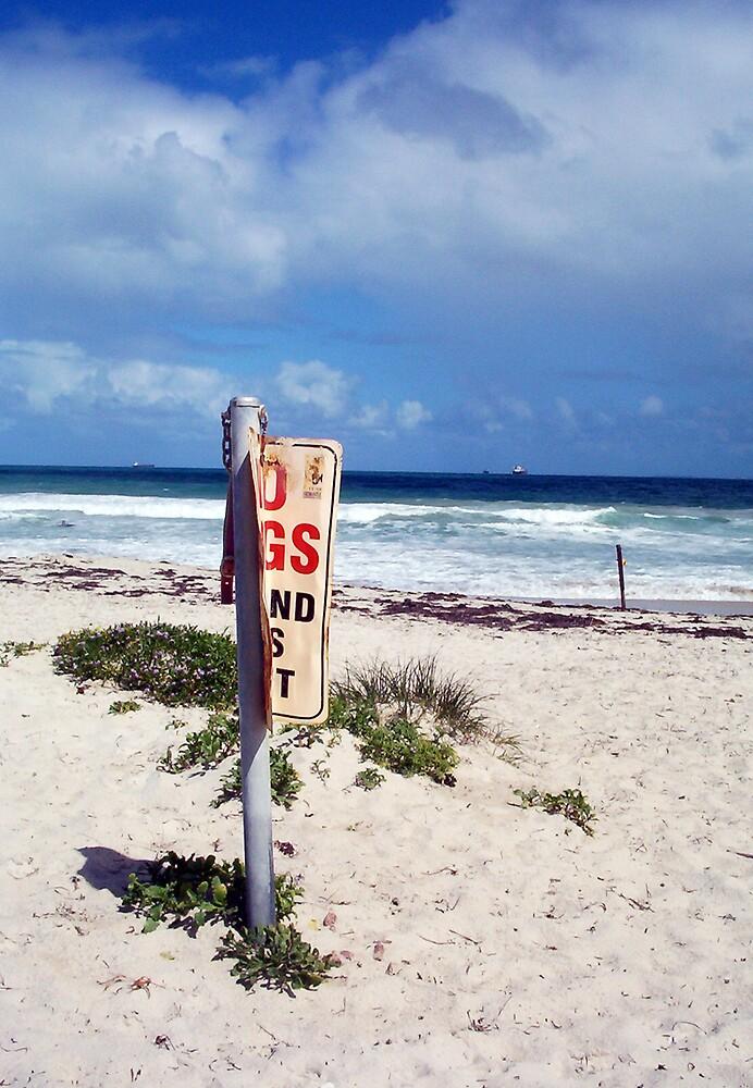 Beach Sign Four by Robert Phillips