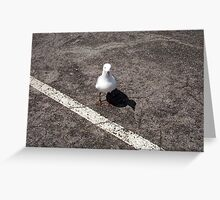 Gull Two Greeting Card