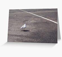 Gull One Greeting Card