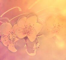 Sweet Blossoms by Nelieta