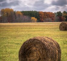 Autumn Harvest 1 by Thomas Young