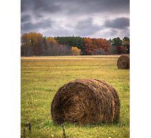 Autumn Harvest 1 Photographic Print