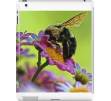 Bumble Bee and Beautiful Marguerite Daisies iPad Case/Skin