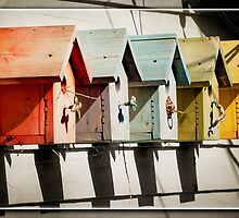 Bird House Row by KBritt