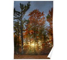 Rays of the Setting Sun Poster